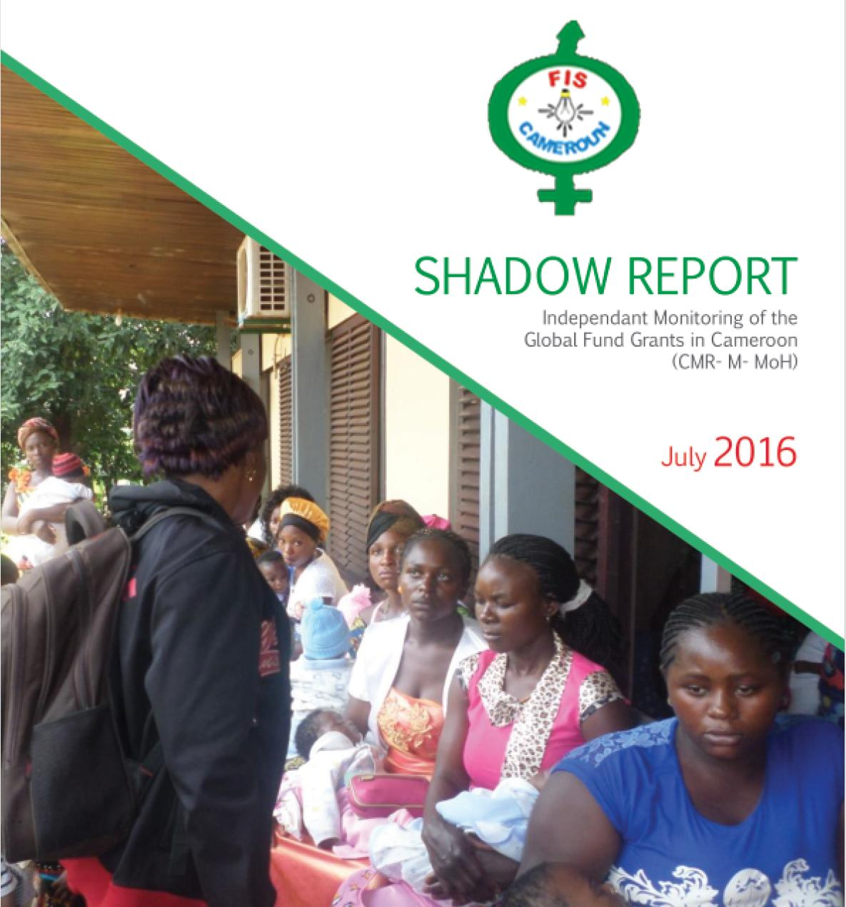india second ngo shadow report